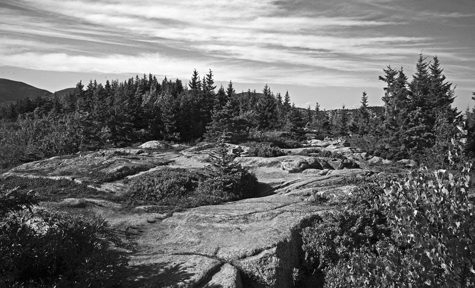 Maine-trail.jpg