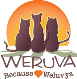 Weruva Pet Foods
