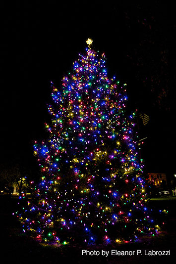annual tree lighting shelter island chamber of commerce