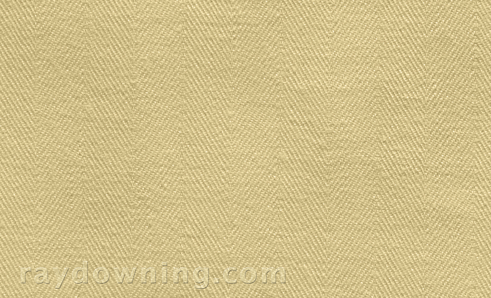 Shroud of Turin weave