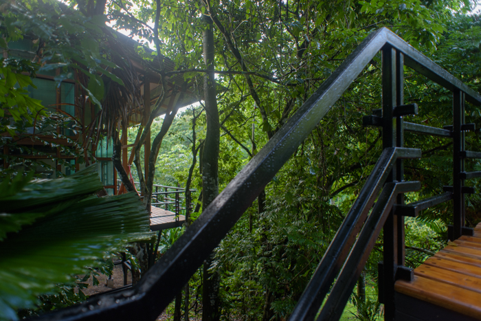 Modern luxury accommodations yoga retreat costa rica