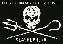 www.seashepherd.org