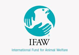www.ifaw.org