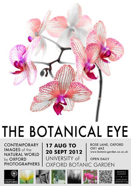 botanical_eye.jpg
