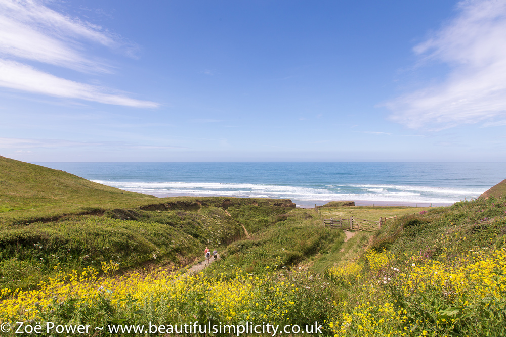 This is the view from the outside seating area at Sandymouth cafe, looking down on the beach - not a bad spot for lunch!