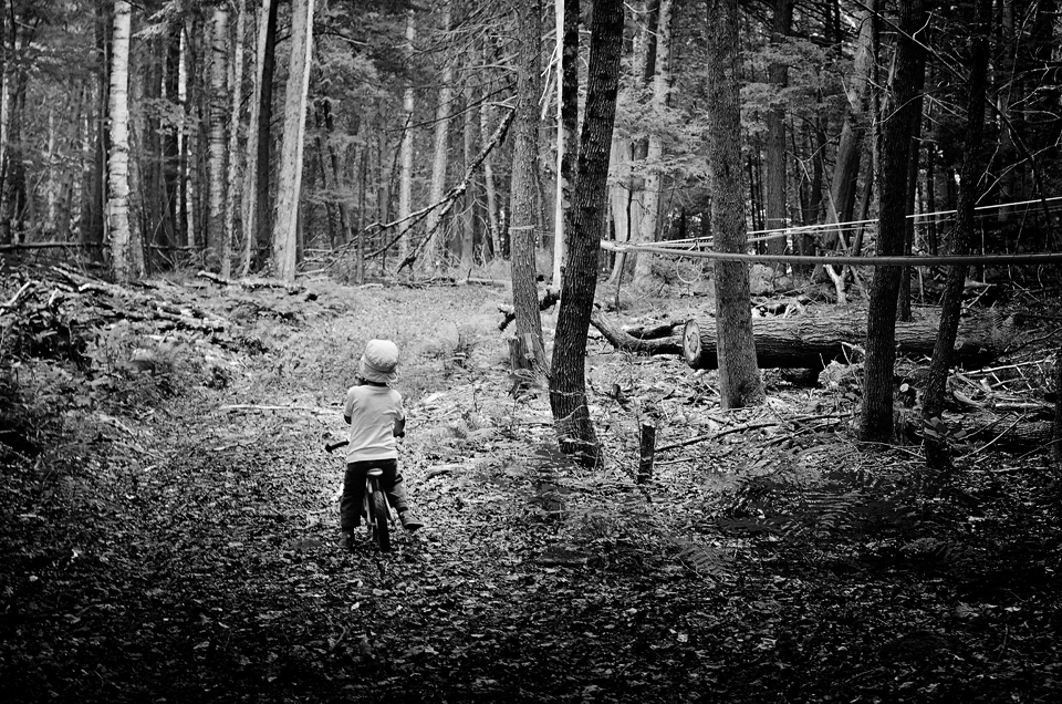Sean and Geneviève's four year old riding his bike in the maple forest.