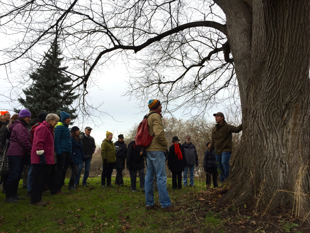 Tree enthusiast Owen Clarkin leading a tree identification tour at the Arboretum.                                                                                                                         Photo: C. Earnshaw