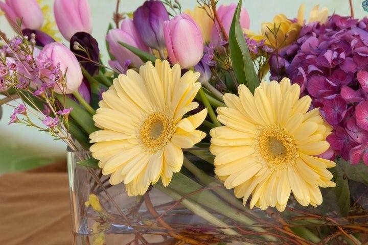 my-flowers-11-2.jpg