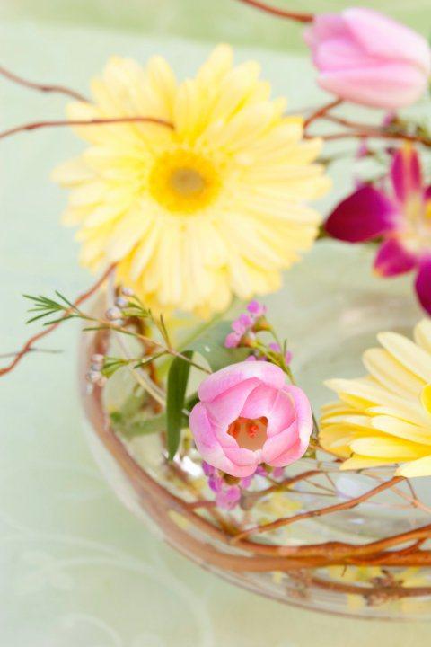 my-flowers-11.jpg
