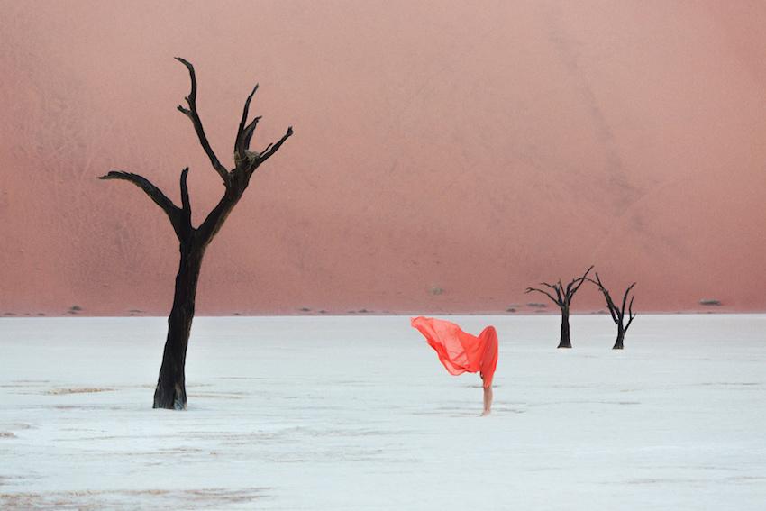 02_Clayton_Woodley_Gazania_krebsiana_Shot-in-Namibia.jpg