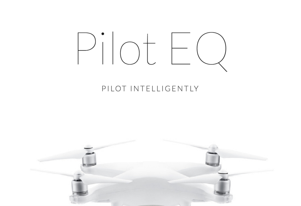 Click here for more information about our training method: Pilot EQ
