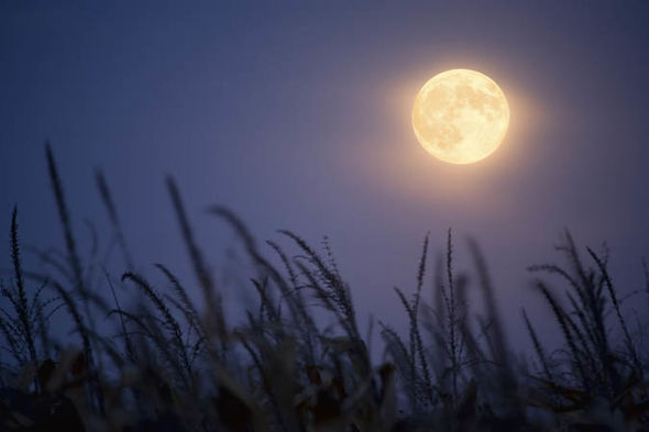 September-Harvest-Moon-horoscope-full-moon-zodiac-astrology-1515480.jpg