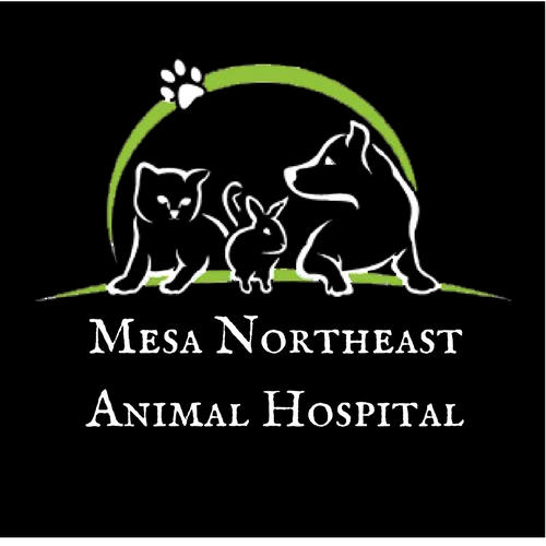Mesa NortheastAnimal Hospital2.jpg