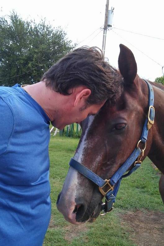horse roman.jpg