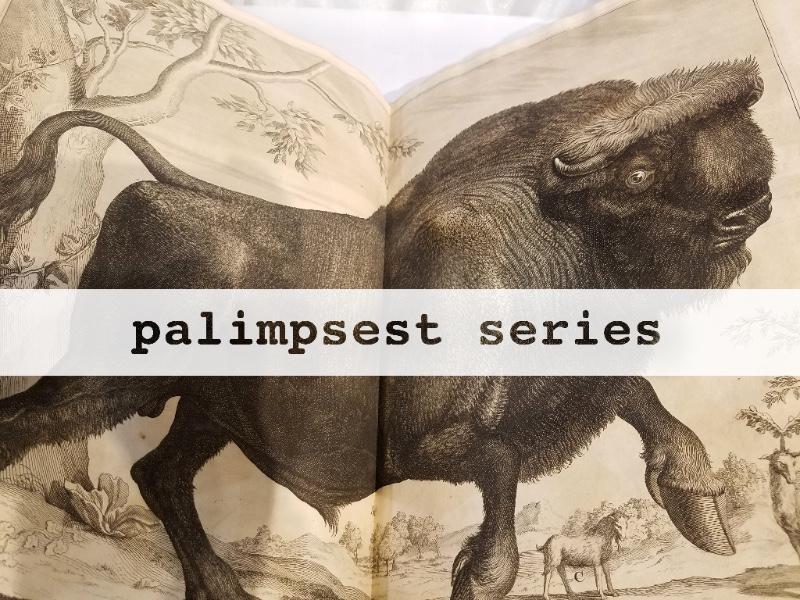 Palimpsest Series