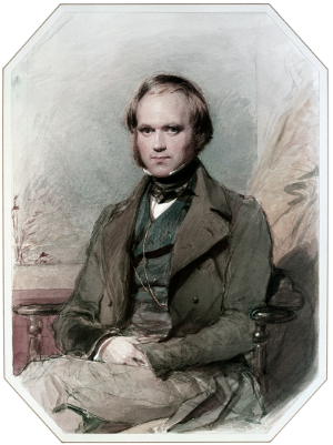 """Charles Darwin by G. Richmond"" by George Richmond - From Origins, Richard Leakey and Roger Lewin. Licensed under Public Domain via Commons"