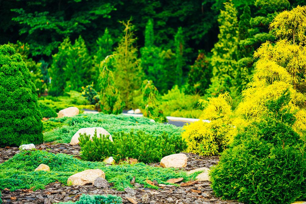 bigstock-Garden-Landscaping-Design-Flo-83981474-web.jpg