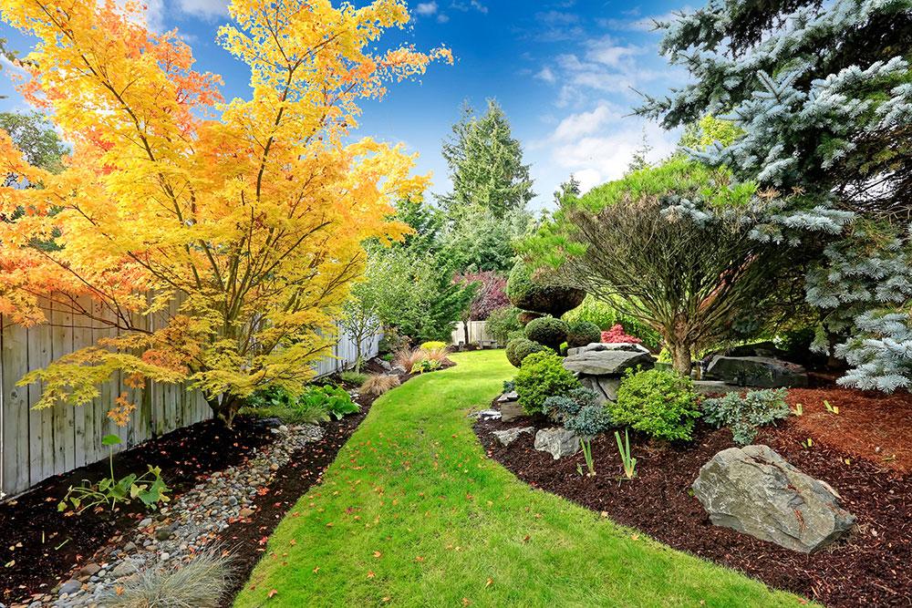 bigstock-Backyard-Landscape-Design-Tro-68899444-web.jpg
