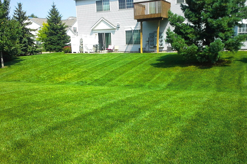lawn-web.jpg