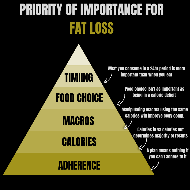 The Most Effective Way To Structure Your Nutrition And Lose Body Fat Adam Willoughby