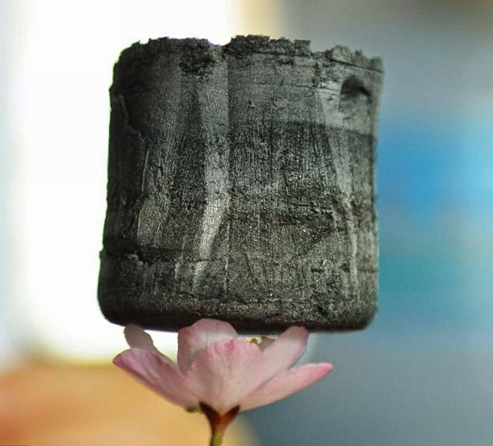 Aerografeno, el material más ligero del mundo, sobre una flor.