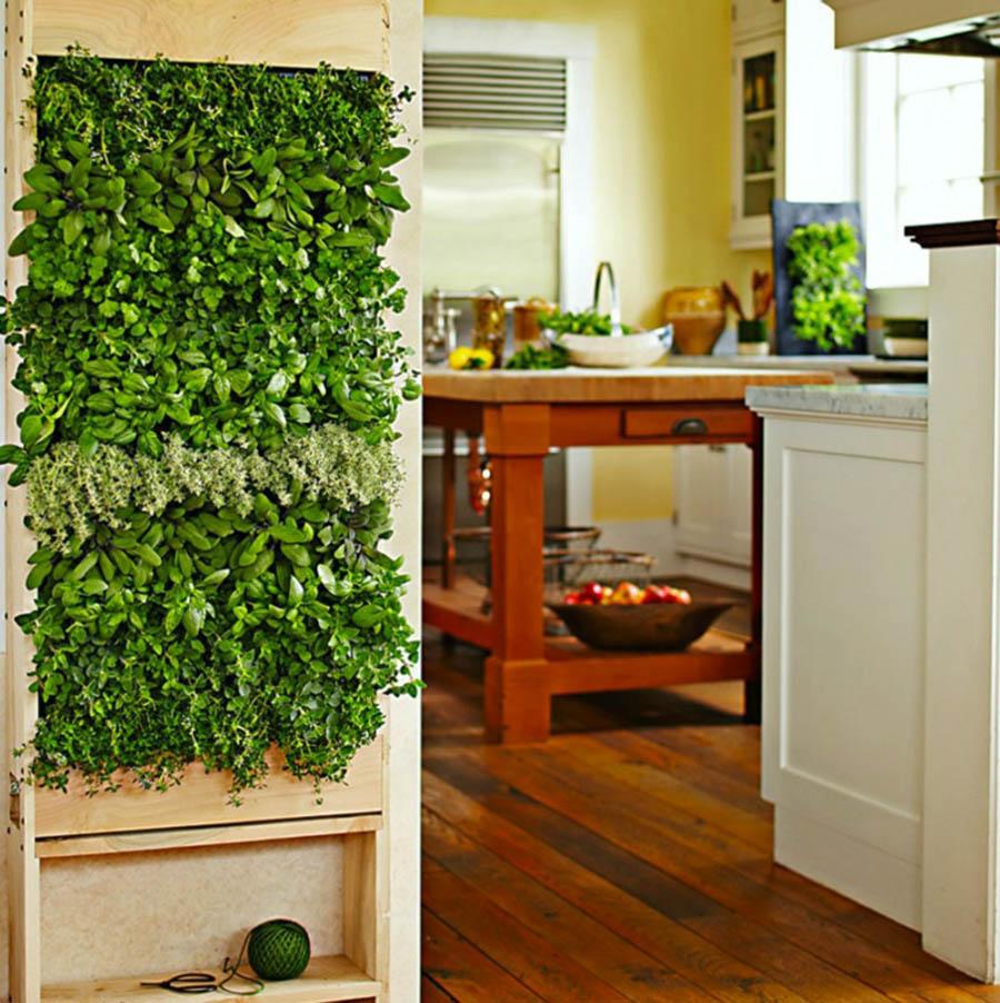 Pequeño jardín vertical para el cultivo de especias.