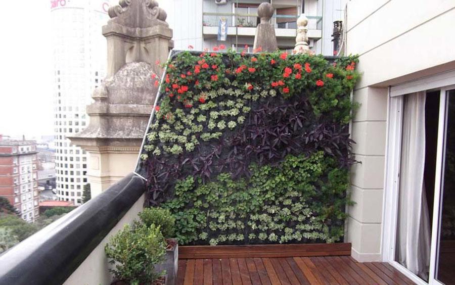 un jard n vertical para tu vivienda