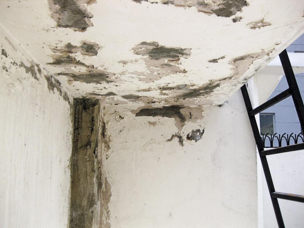 Arrevol Arquitectos: Tipos de humedades, cómo identificarlas