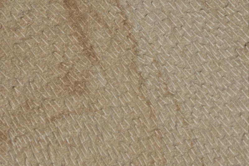 Arenisca apiconada