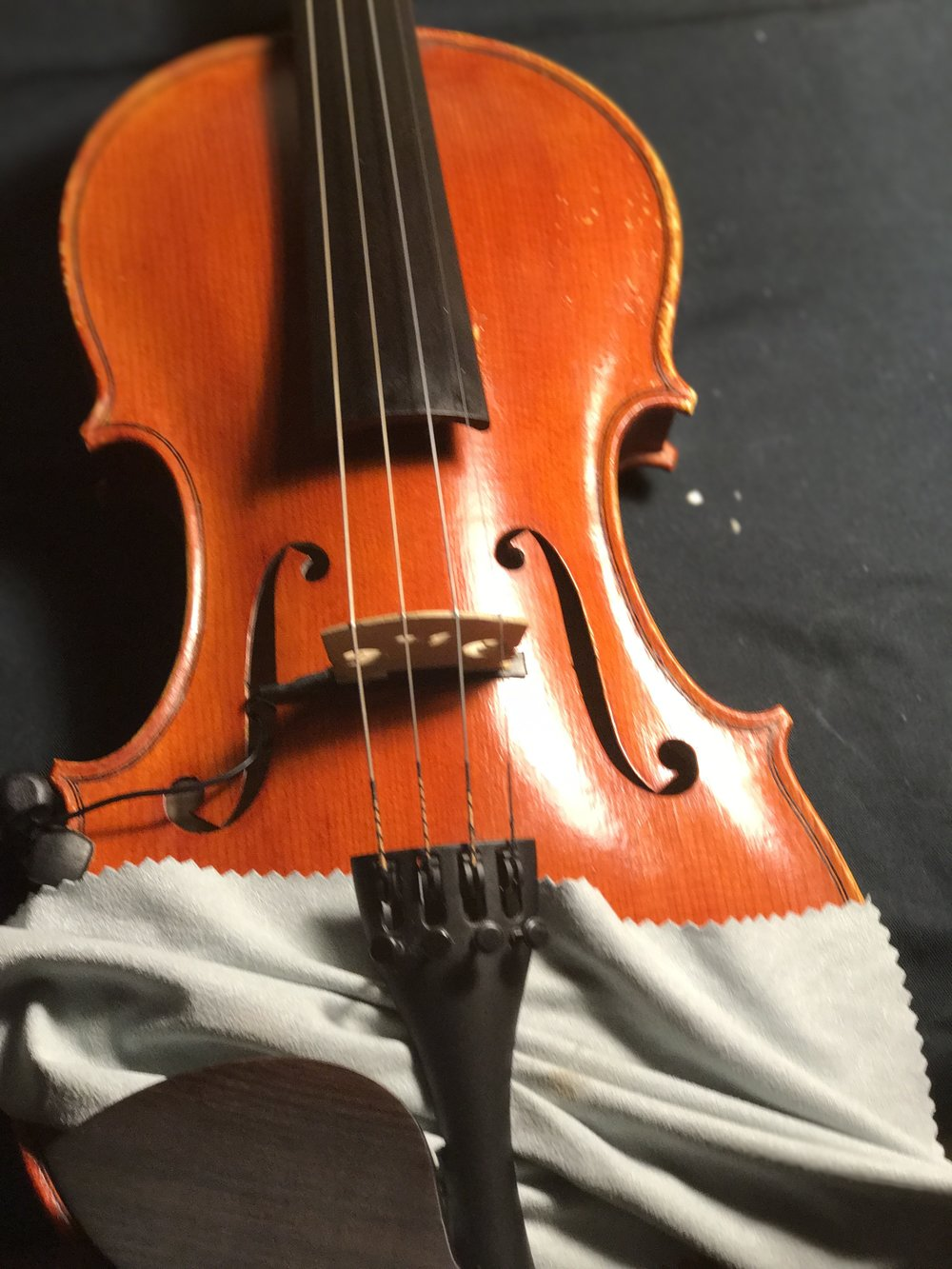 Wipe under tailpiece, chinrest and fingerboard. Rub at area under strings near the bridge. - Be aware of heat buildup. It is possible to damage the varnish with heat from friction.
