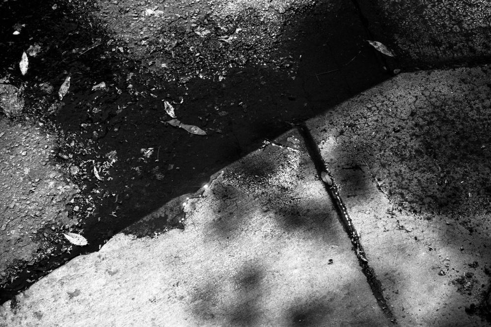 Water at a curb on Robertson in West Hollywood