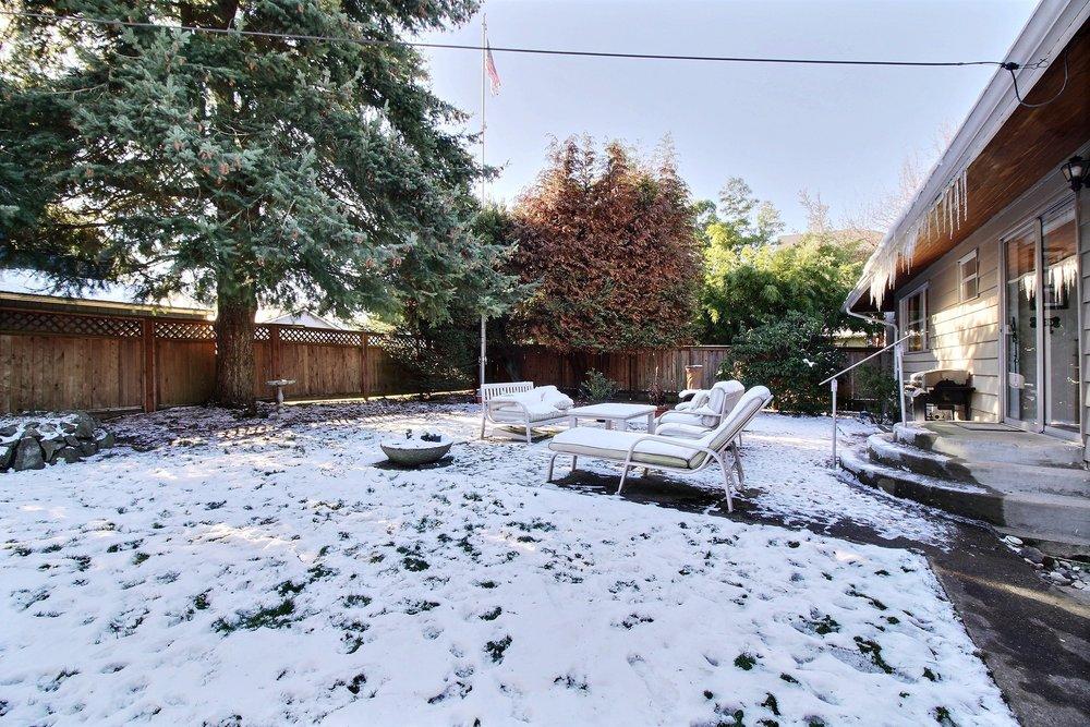 09-backyard2601.jpg
