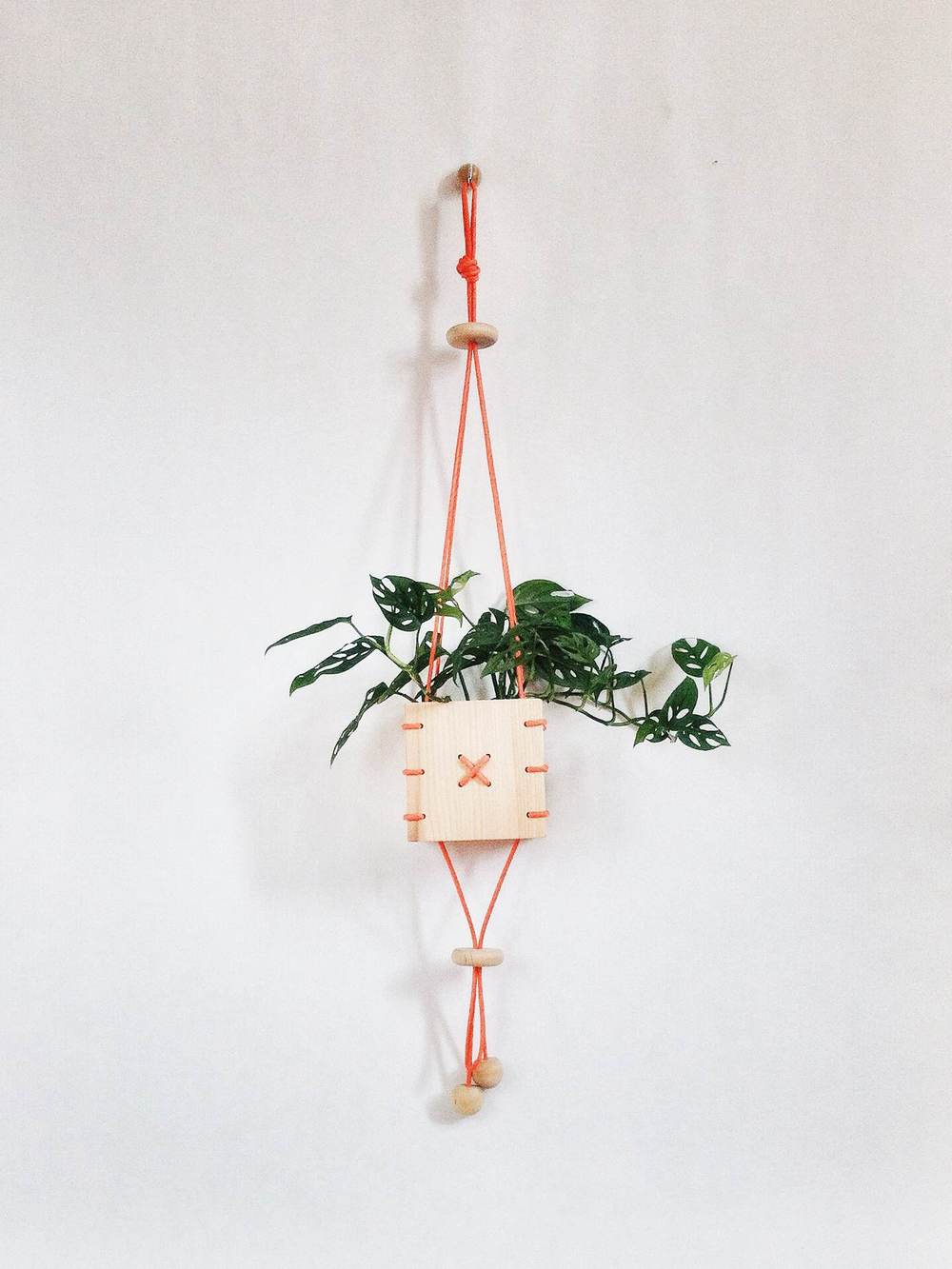 Cinch Small wooden hanging planter with orange paracord