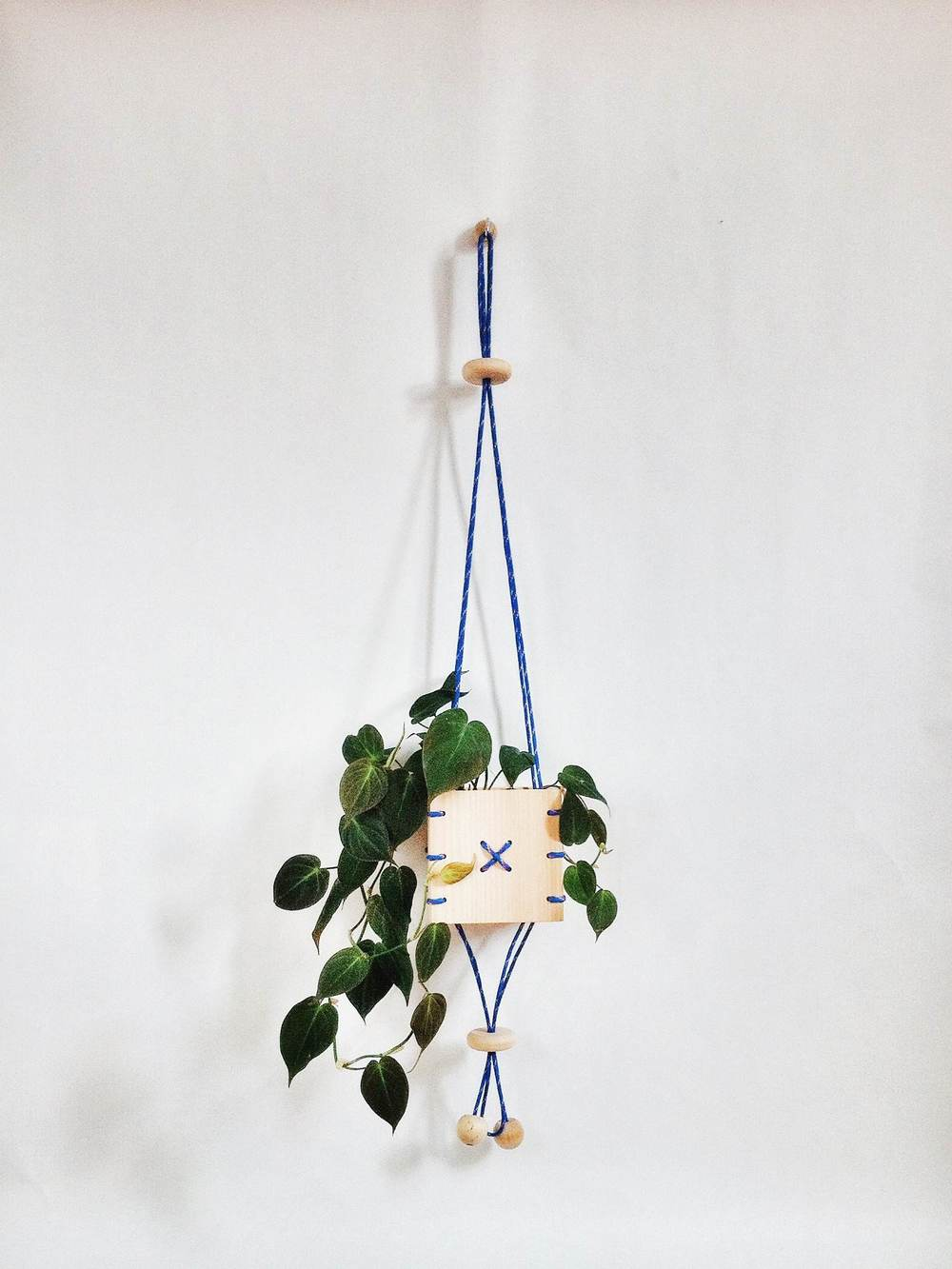 Cinch wooden hanging planter box