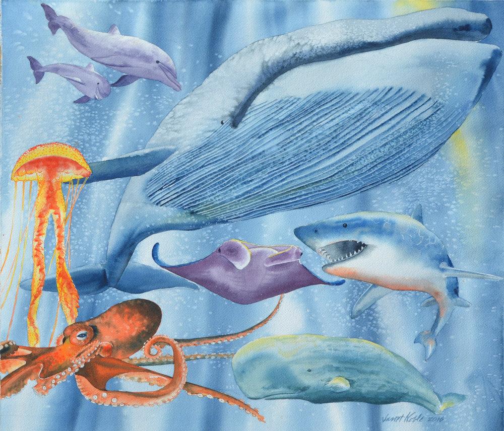 Ocean Creatures.jpg
