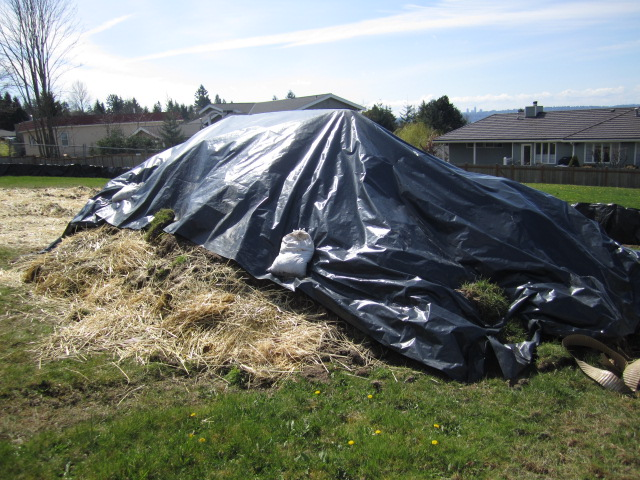 covered dirt pile