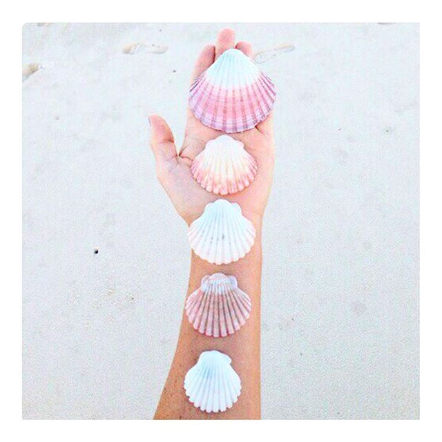 She sells sea shells..