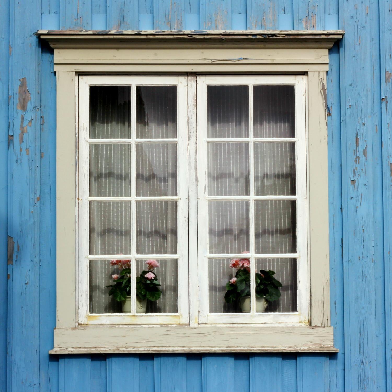Outside house windows - 107 The Blue House Jpg