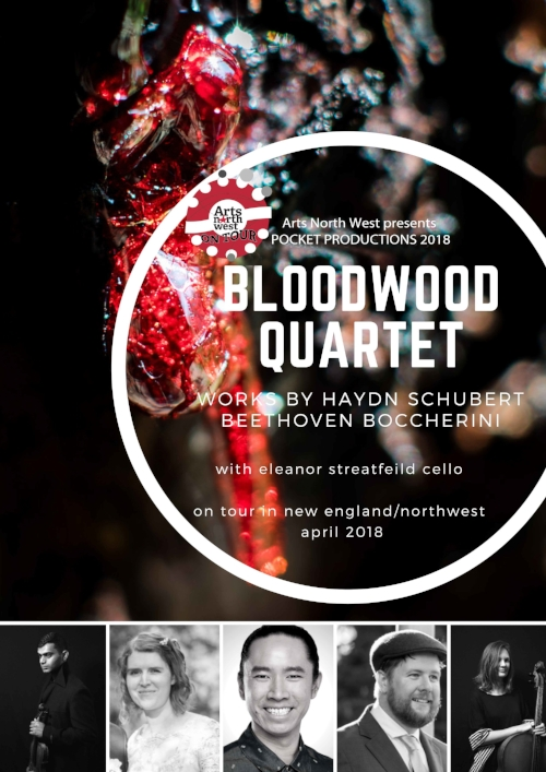 Bloodwood Quartet Poster.jpg