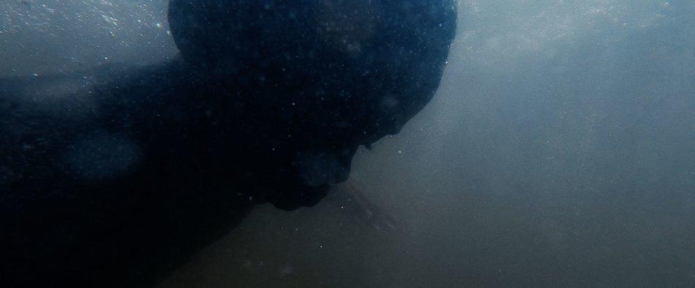 underwater boy.jpg