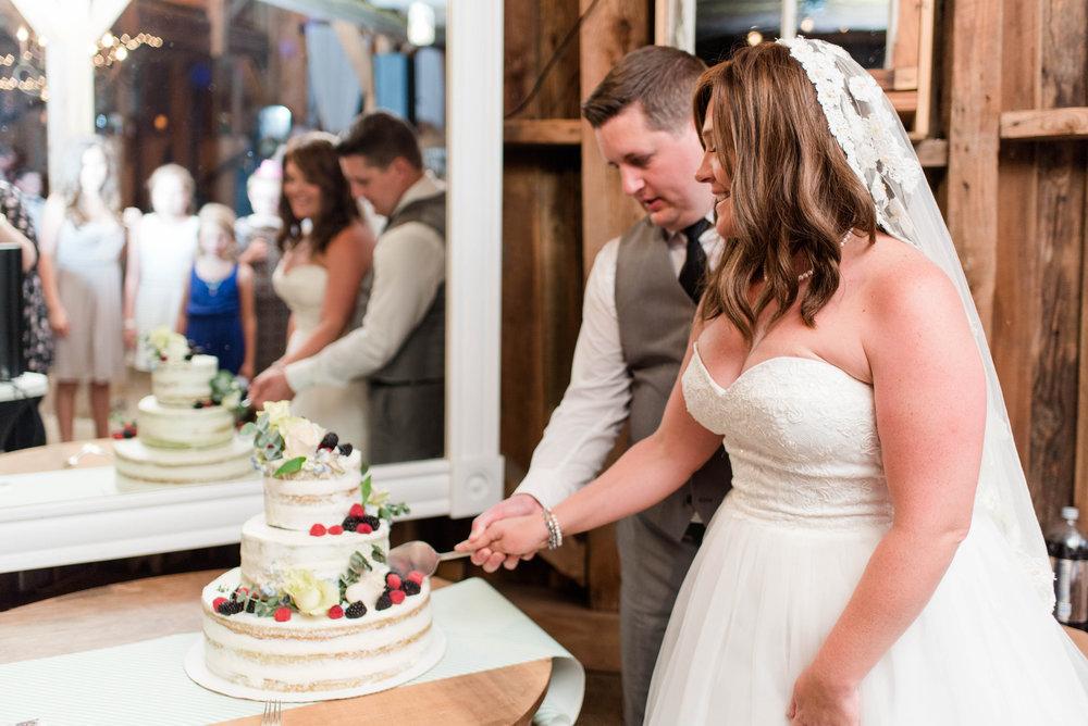 wedding cake cutting northern virginia