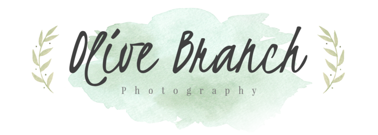 Olive Branch Photography