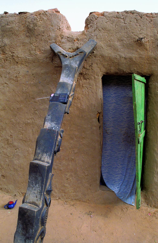 A Dogon Ladder
