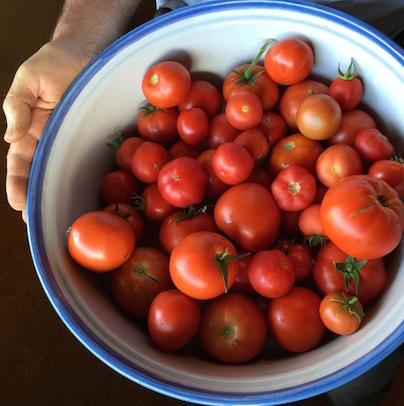 tomato bowl.jpg