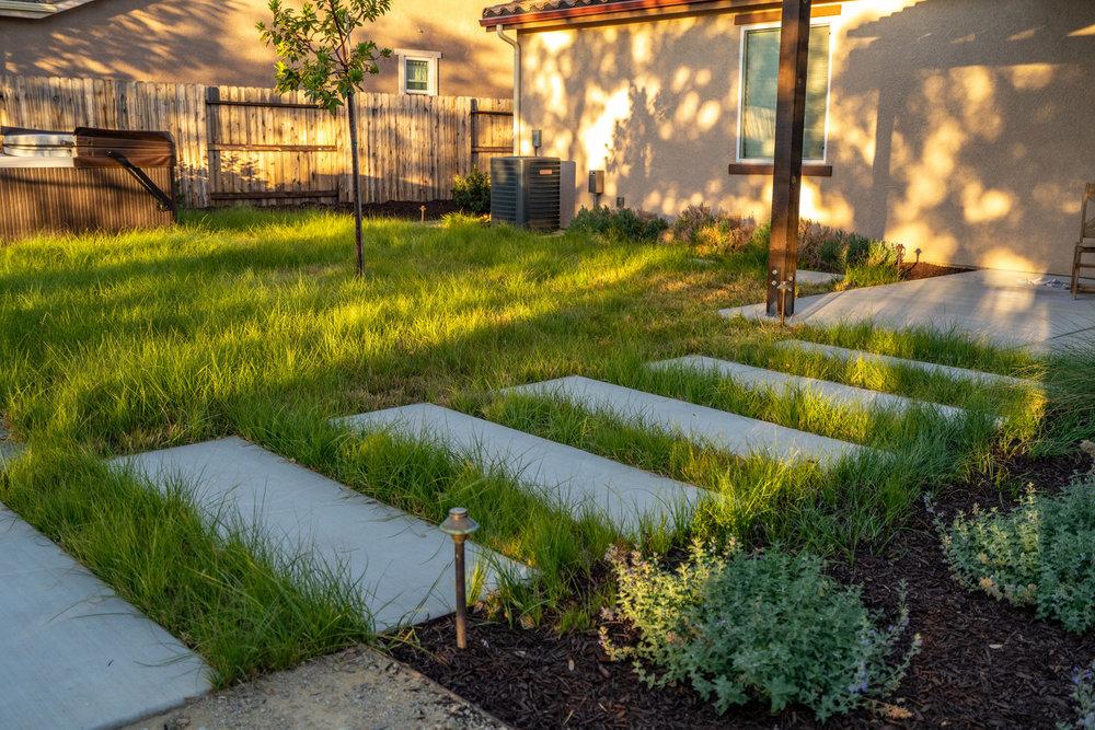 concrete-steppers-through-meadow.jpg