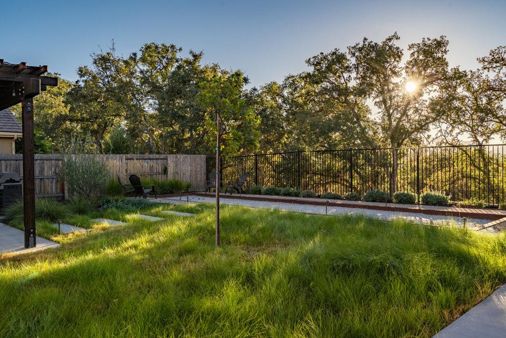 meadow-grass-with-oak-filtered-light.jpg