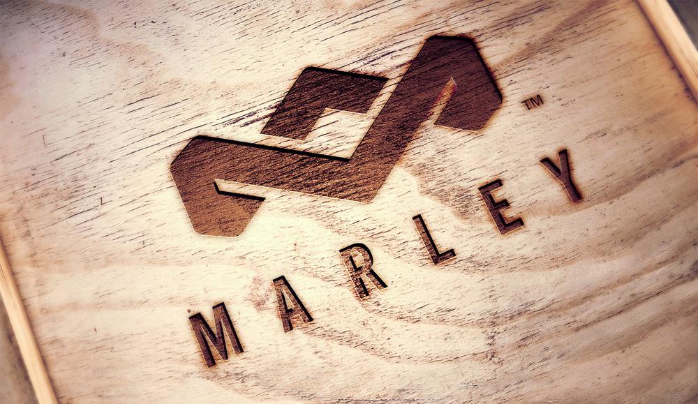 HOM_Main_Logo_02.jpg