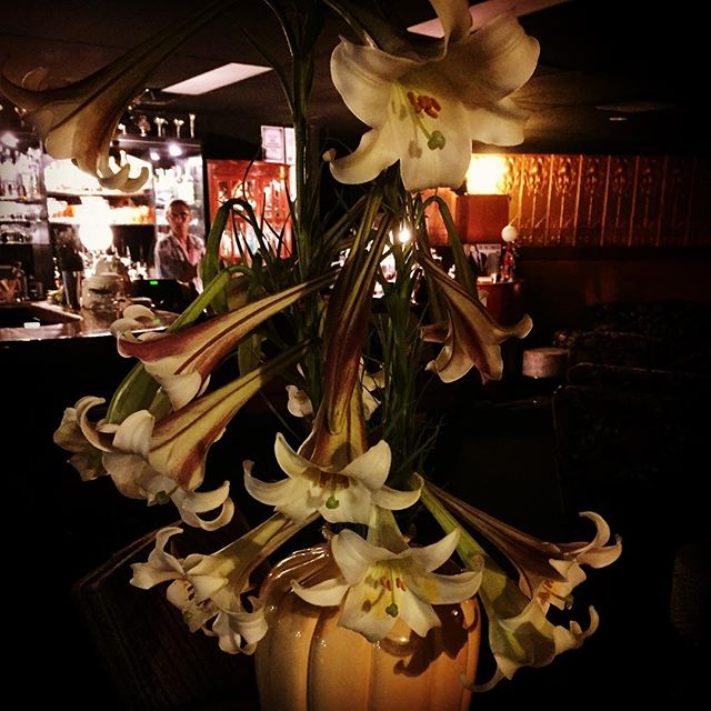 Lily was here #lily #cocktail #cocktailbar #nambour #yesitsinnambour #sunshinecoastbars #sunshinecoast #nambourbynight