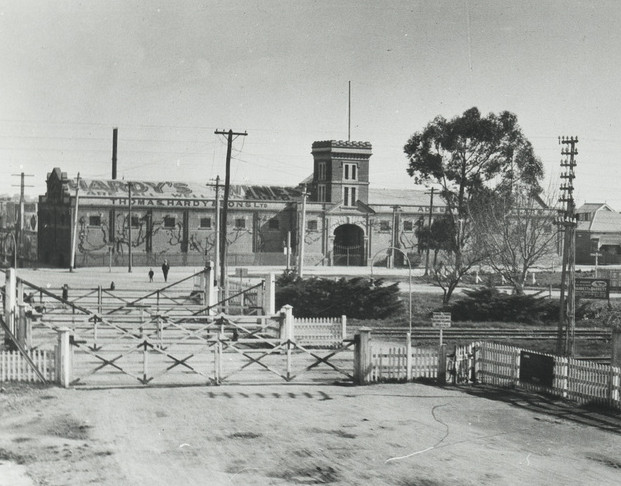 Railway crossing with Hardy's building in background, Photograph History Hub SA