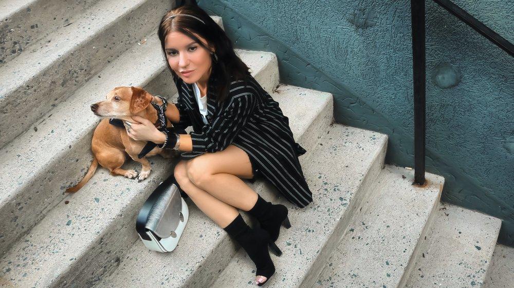 Isabel Alexander With Her Daschund Dog  On the Stairs Wearing Black Striped Boyfriend Blazer and Frayed Hem Denim Skirt